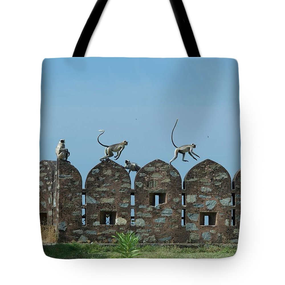Clear Sky Tote Bag featuring the photograph Apes Playing At Kumbhalgarh by Dominik Eckelt