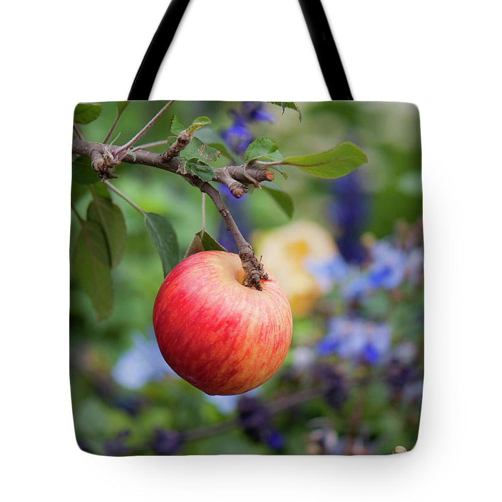 Apple Tote Bag featuring the photograph Apple On The Tree by Jennette Lau