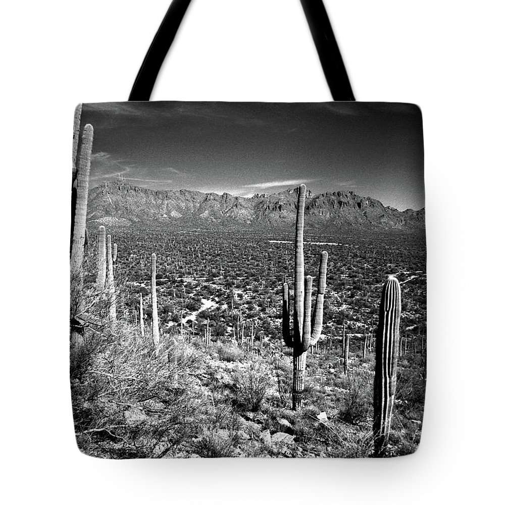 Saguaro Cactus Tote Bag featuring the photograph Arizona, Tucson, Saguaro Np, Brown by James Denk