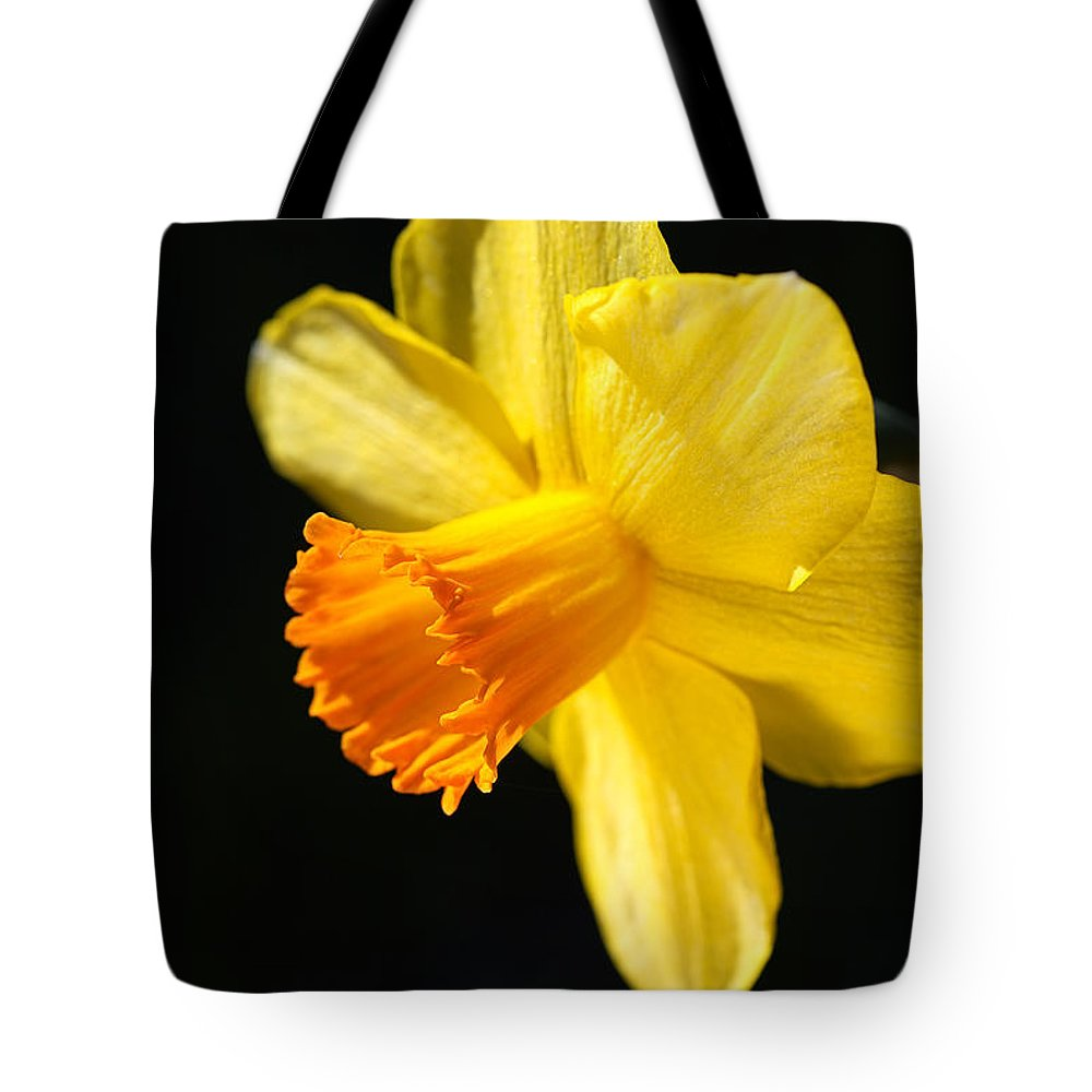 Daffodil Tote Bag featuring the photograph Sunny Yellows Of A Spring Daffodil by Joy Watson
