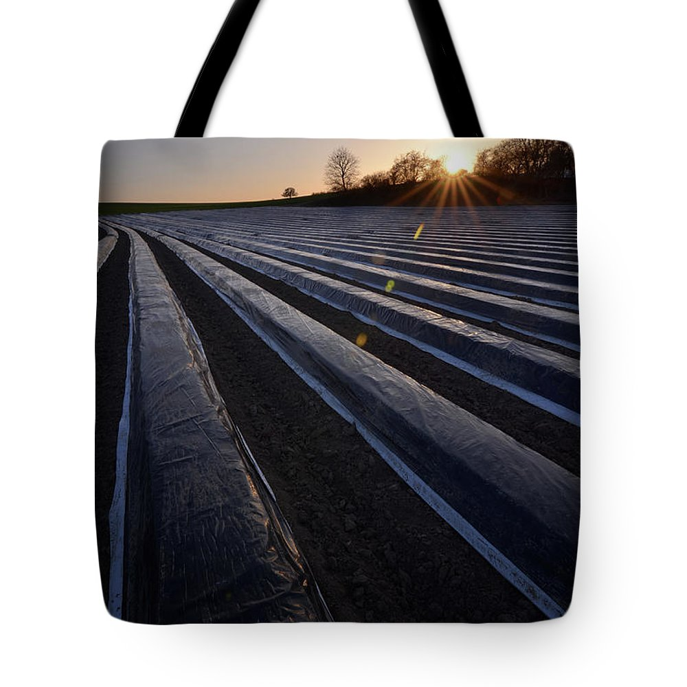 Tranquility Tote Bag featuring the photograph Asparagus Field by Andy Brandl
