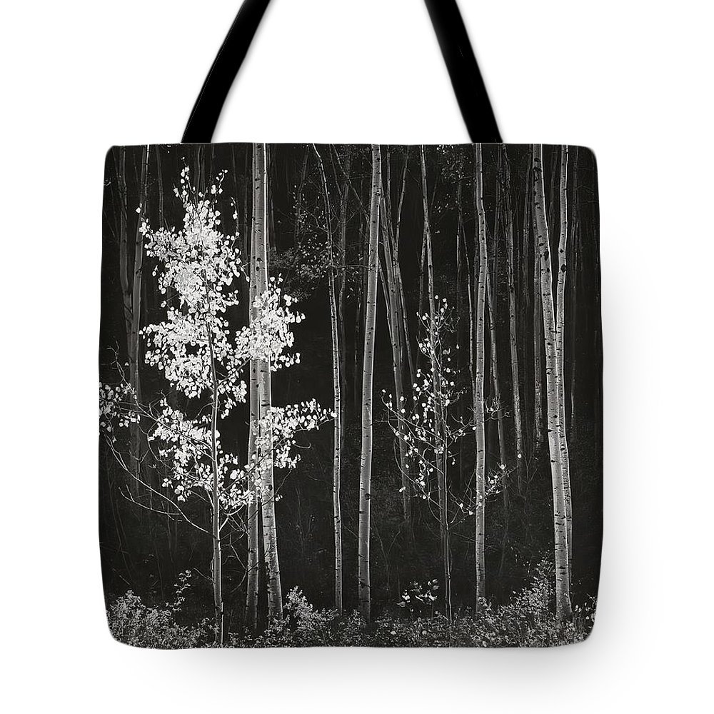 White Mountains Digital Art Tote Bags