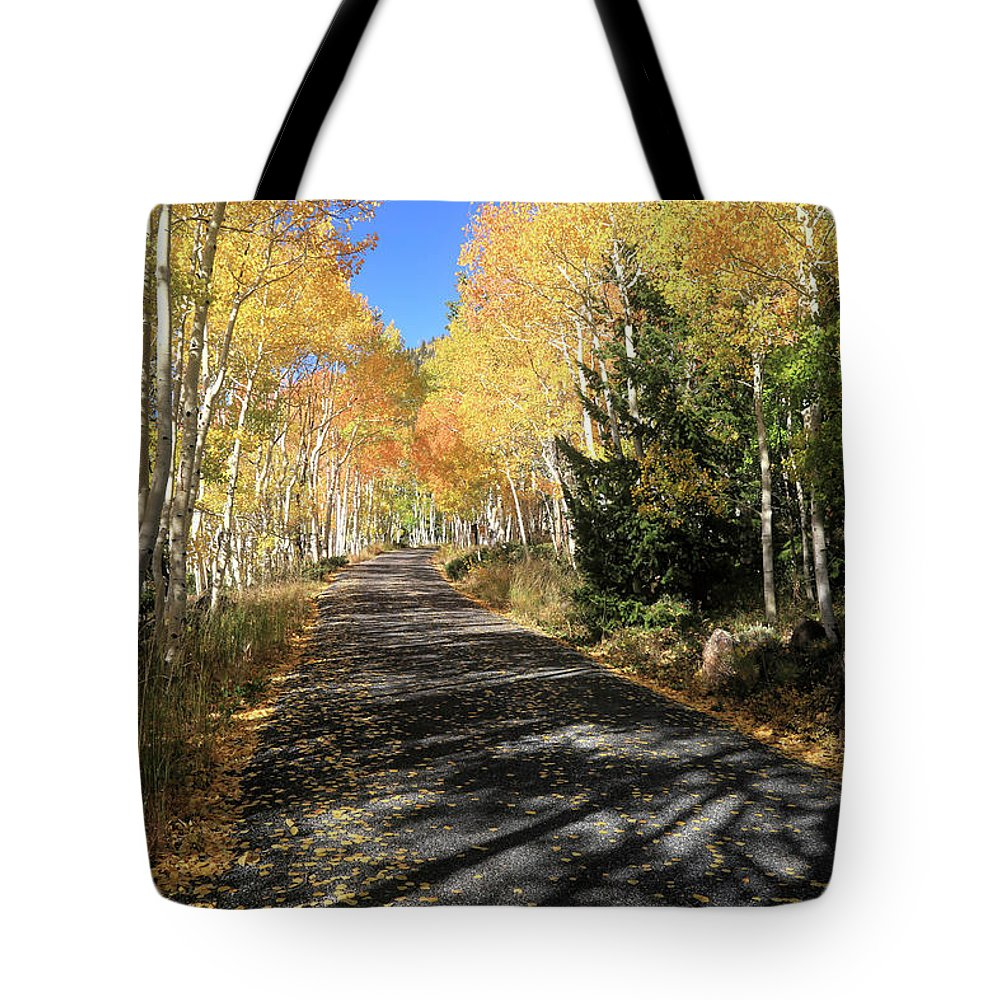 Fishlake National Forest Tote Bag featuring the photograph Autumn Bliss by Donna Kennedy