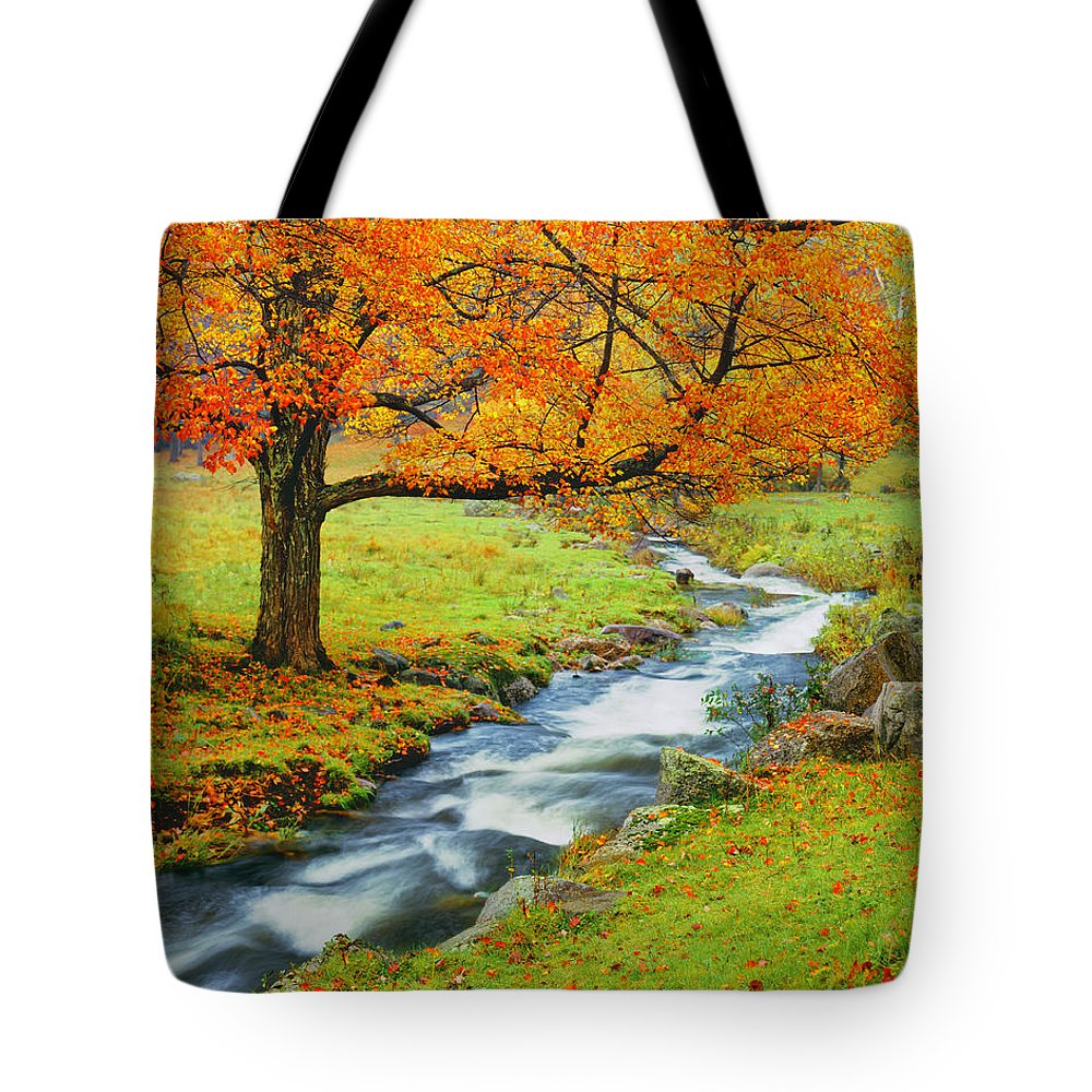 Scenics Tote Bag featuring the photograph Autumn In Vermont G by Ron thomas