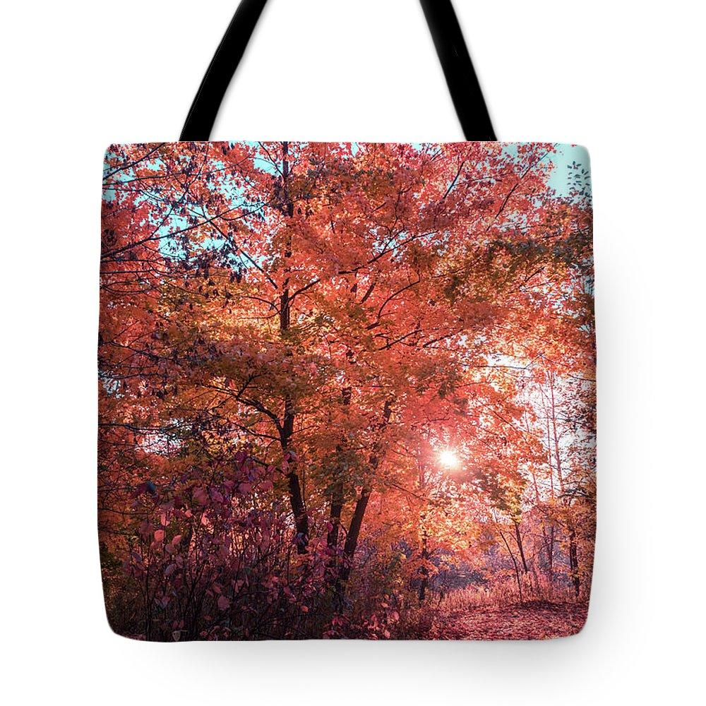 Autumn Path Tote Bag featuring the photograph Autumn Path Reimagined by Georgia Mizuleva