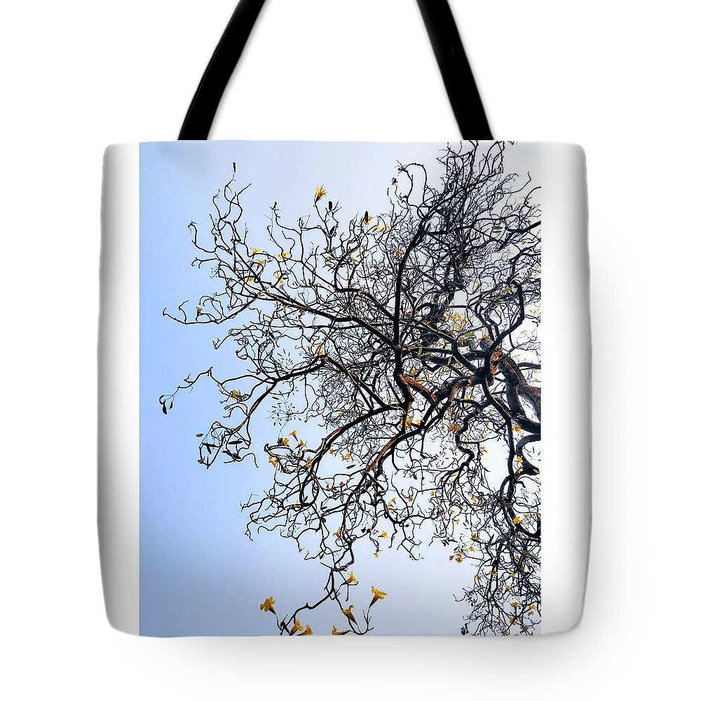 Autumn Tote Bag featuring the photograph Autumn by Priya Hazra