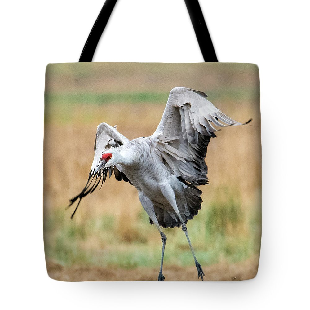 Sandhill Crane Tote Bag featuring the photograph Awkward Landing by Mike Dawson