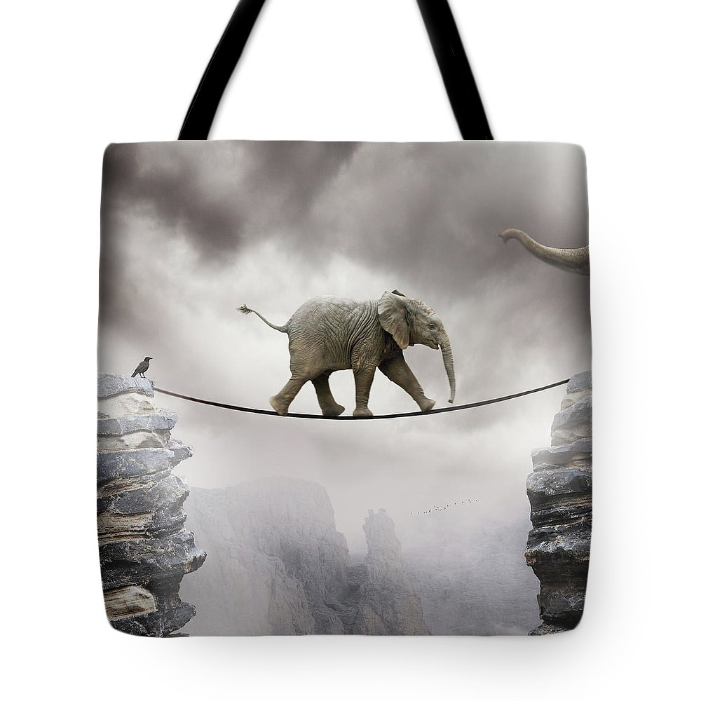 Animal Themes Tote Bag featuring the photograph Baby Elephant by By Sigi Kolbe
