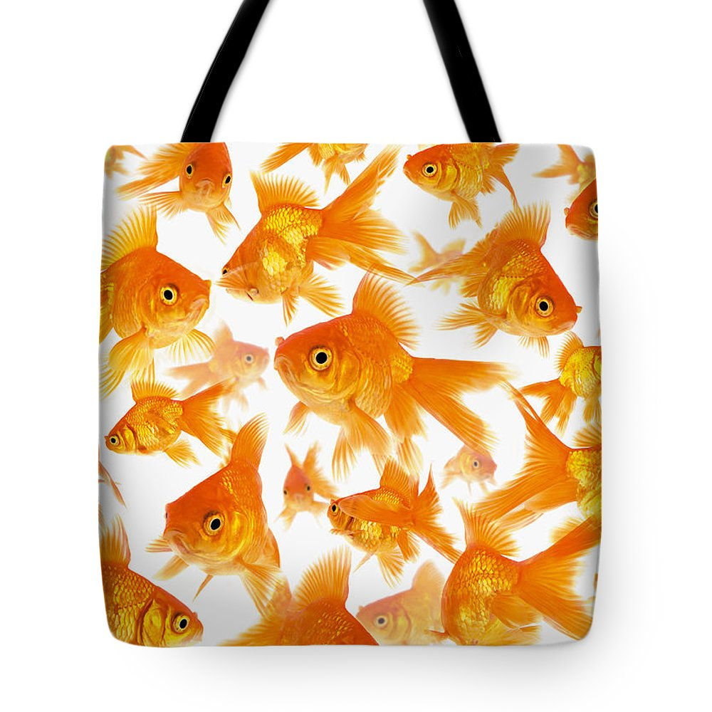 Orange Color Tote Bag featuring the photograph Background Showing A Large Group Of by Cocoon