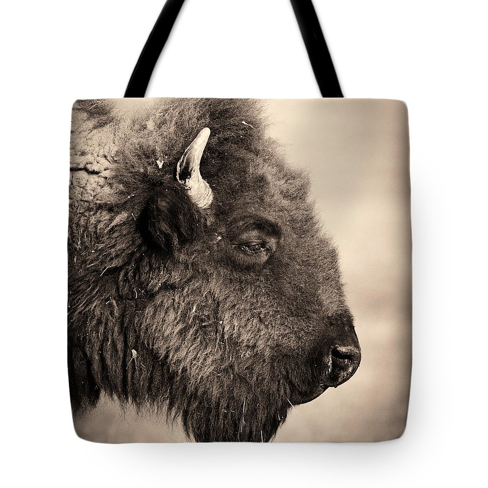 Horned Tote Bag featuring the photograph Badlands National Park Portrait Of A by Elementalimaging