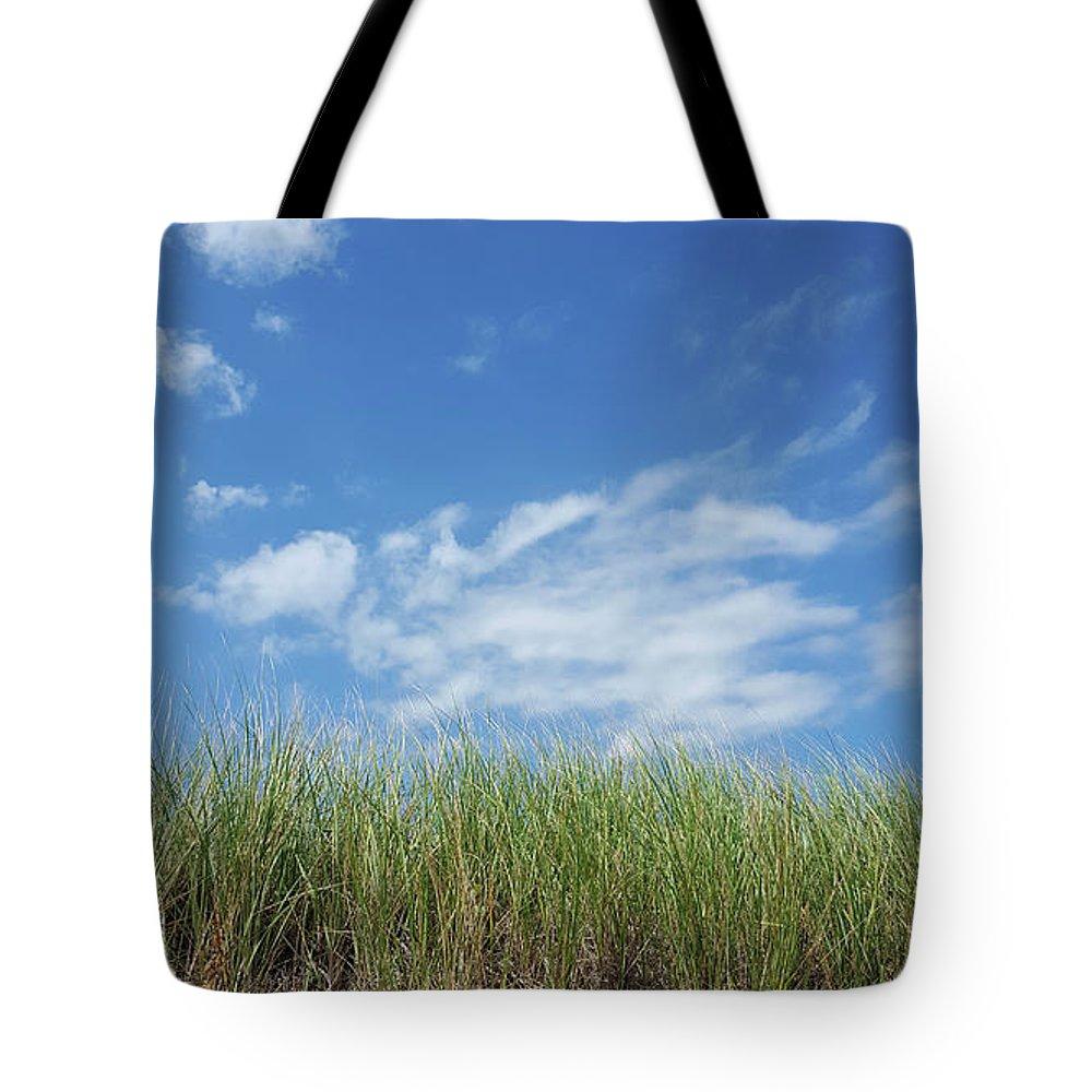 Grass Tote Bag featuring the photograph Beach Grass by Trevor Slauenwhite