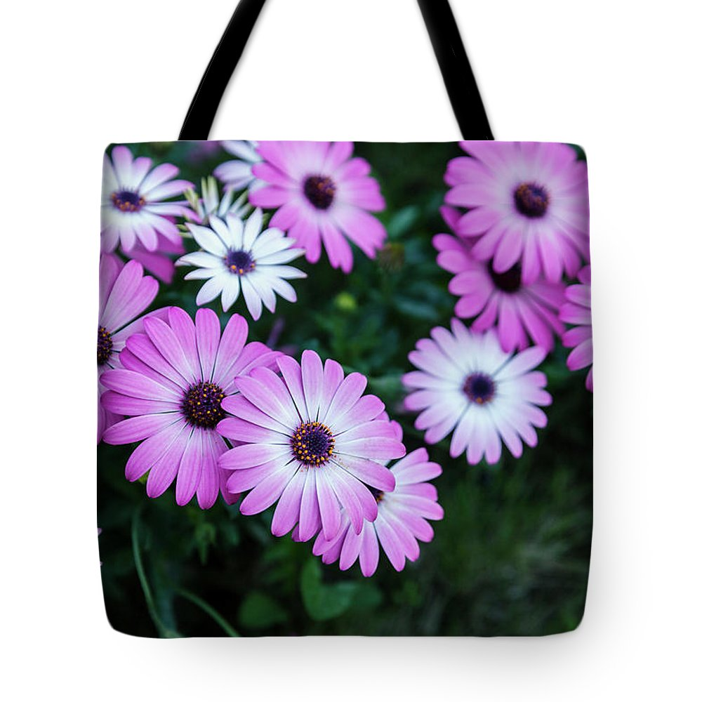 Pink Tote Bag featuring the photograph Beautiful Pink Flowers In Grass by Dejan Jekic