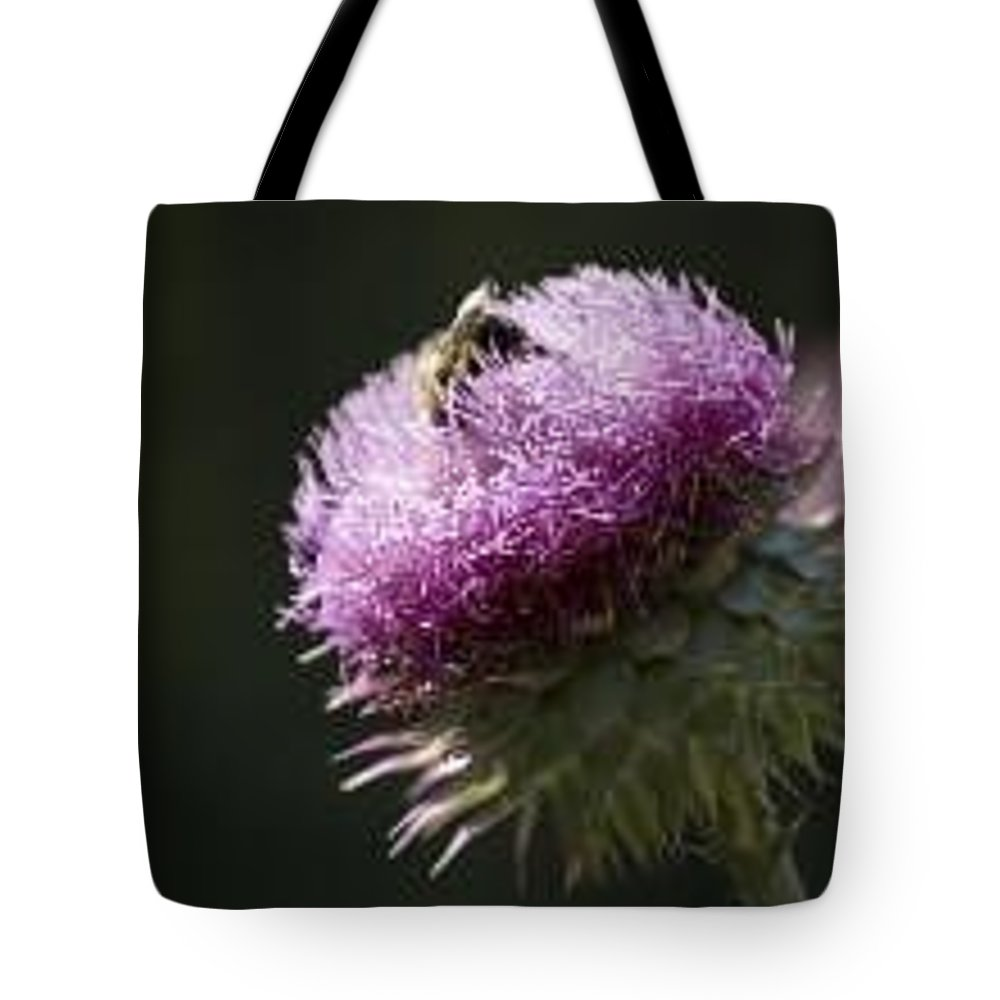 Bee Tote Bag featuring the photograph Bee on Thistle by Nancy Ayanna Wyatt