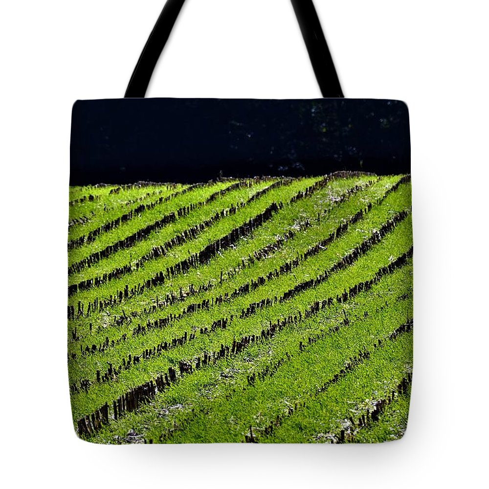 Field Tote Bag featuring the photograph Between The Rows by Robert Lowe