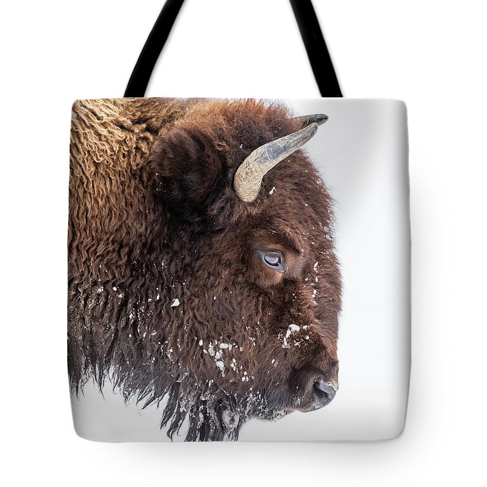 Vertebrate Tote Bag featuring the photograph Bison In Winter by Kencanning