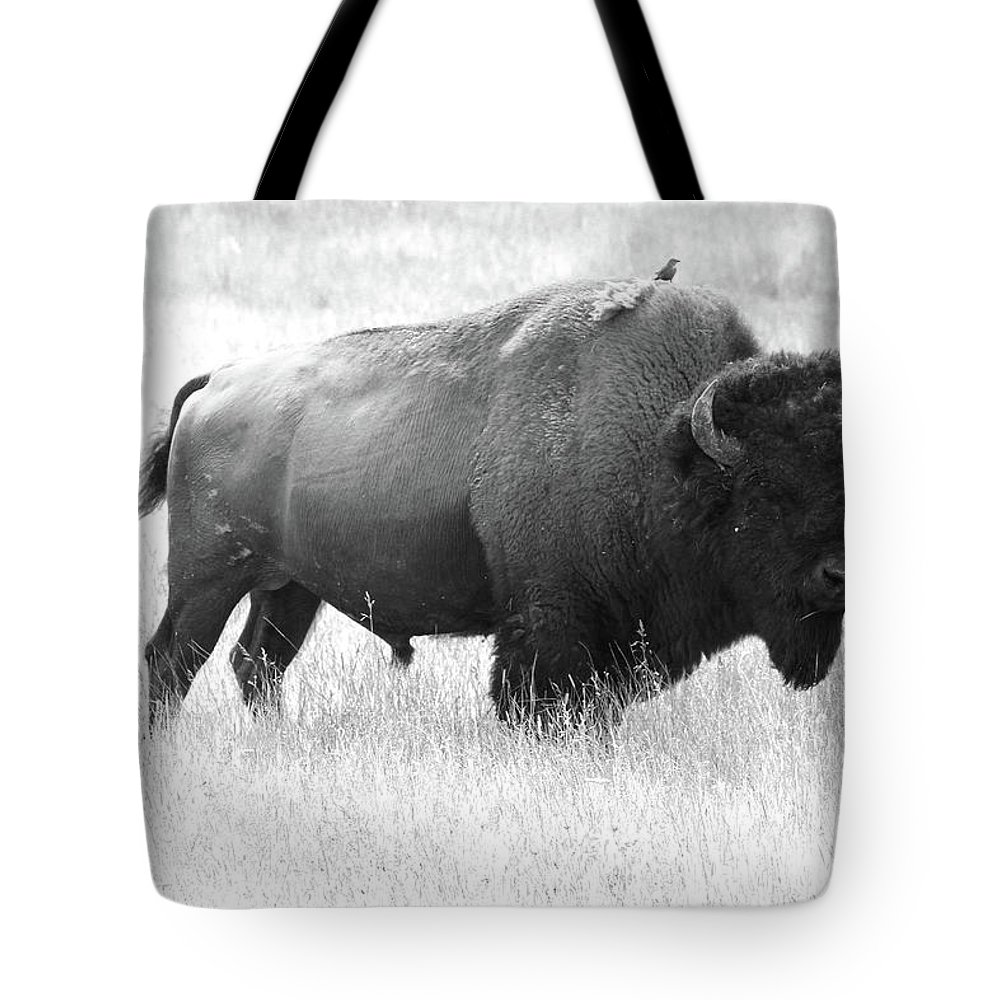Bison Tote Bag featuring the photograph Bison - Monochrome by Christiane Schulze Art And Photography