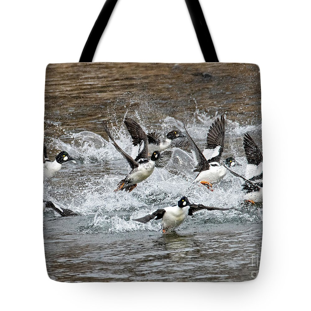 Goldeneyes Tote Bag featuring the photograph Blast Off by Mike Dawson