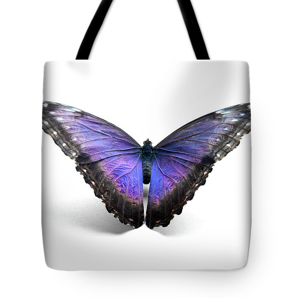 Shadow Tote Bag featuring the photograph Blue Morpho Butterfly by Mashabuba