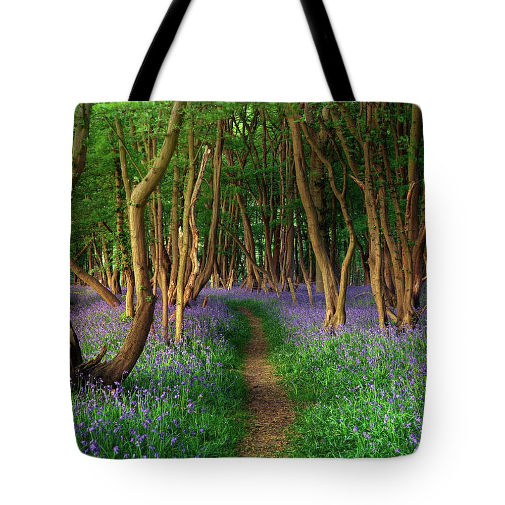 Tranquility Tote Bag featuring the photograph Bluebells In Sussex by Photography By Sam C Moore