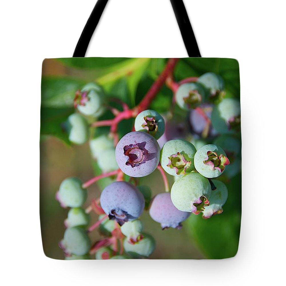 Large Group Of Objects Tote Bag featuring the photograph Blueberries by ©howd, Howard Lau