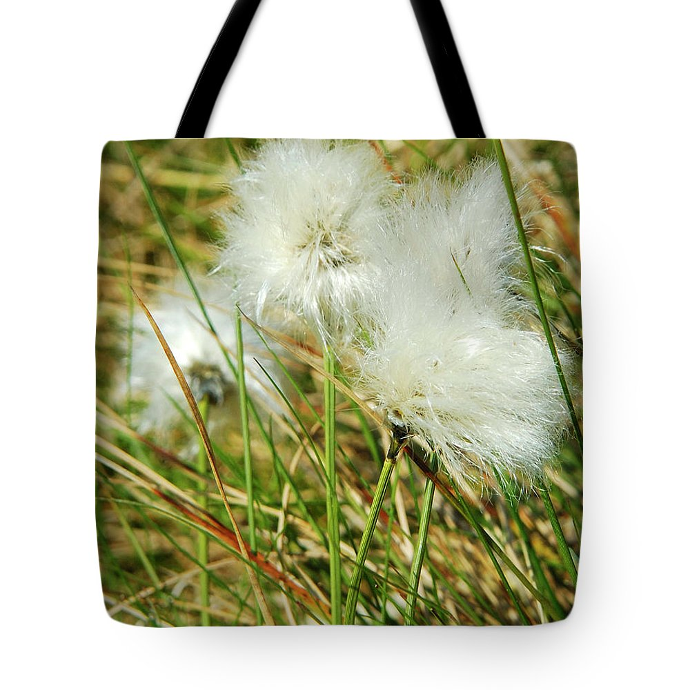 Fauna Tote Bag featuring the photograph Bog Cotton On The Moor by Victor Lord Denovan