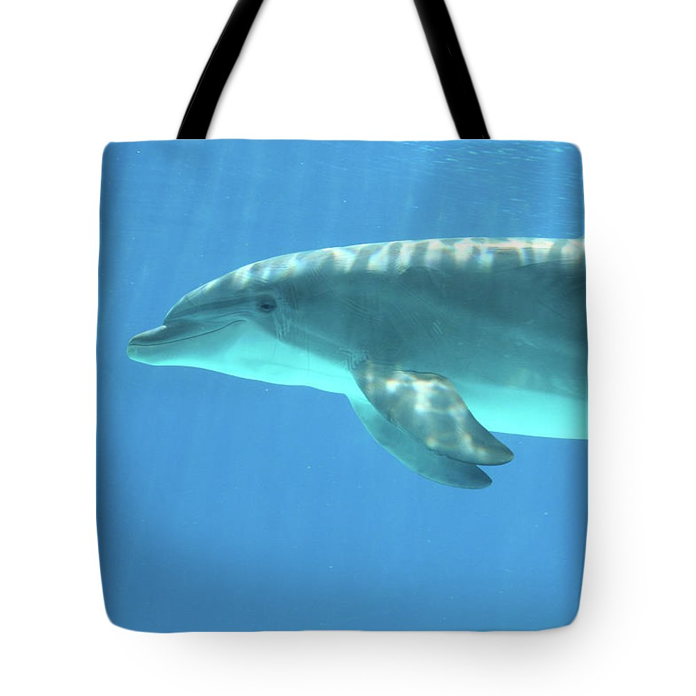 Underwater Tote Bag featuring the photograph Bottlenose Dolphin by Anzeletti