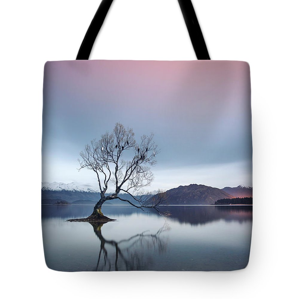 Kremsdorf Tote Bag featuring the photograph Bowing Down In Grace by Evelina Kremsdorf