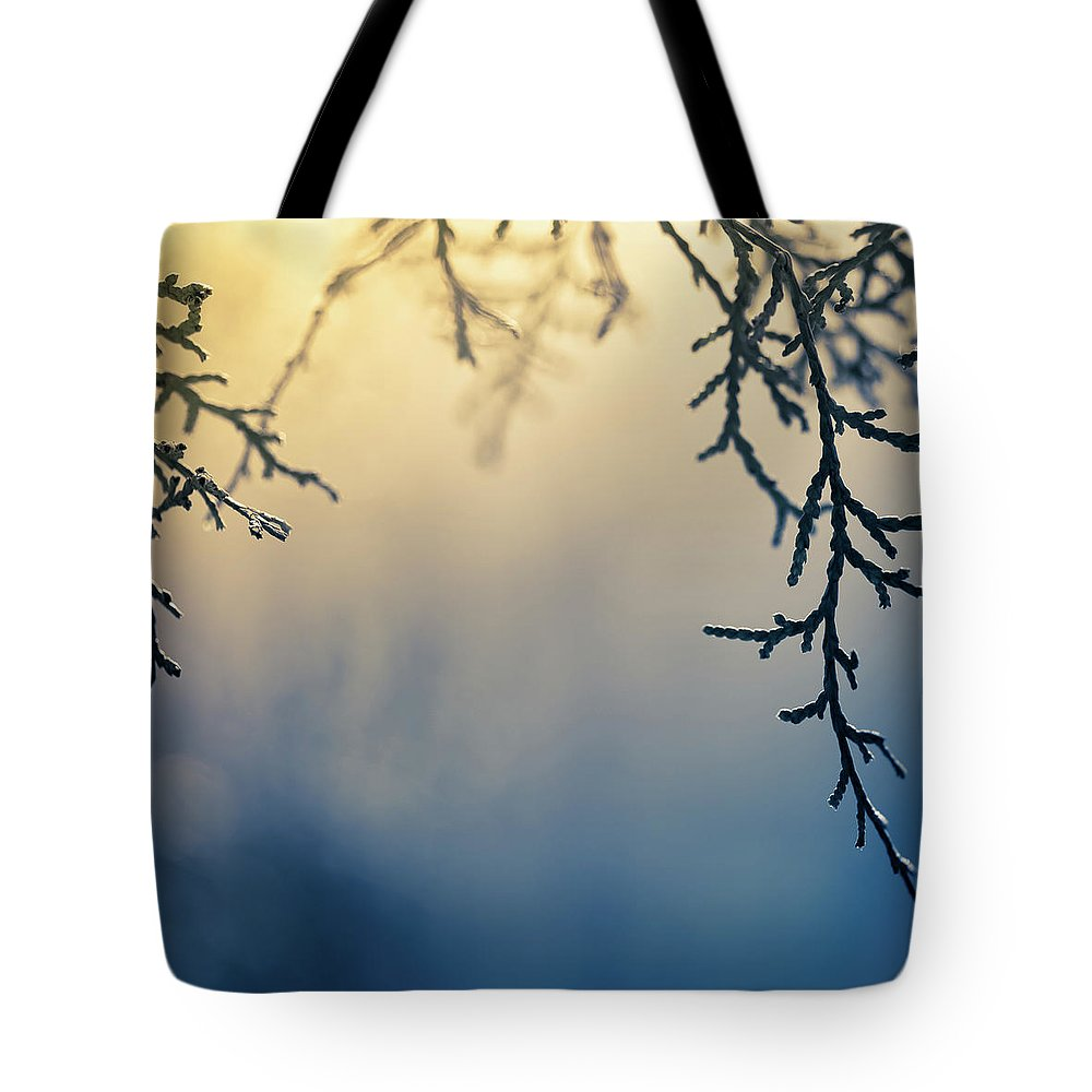 Saturated Color Tote Bag featuring the photograph Branch Of Pine Tree by Jeja