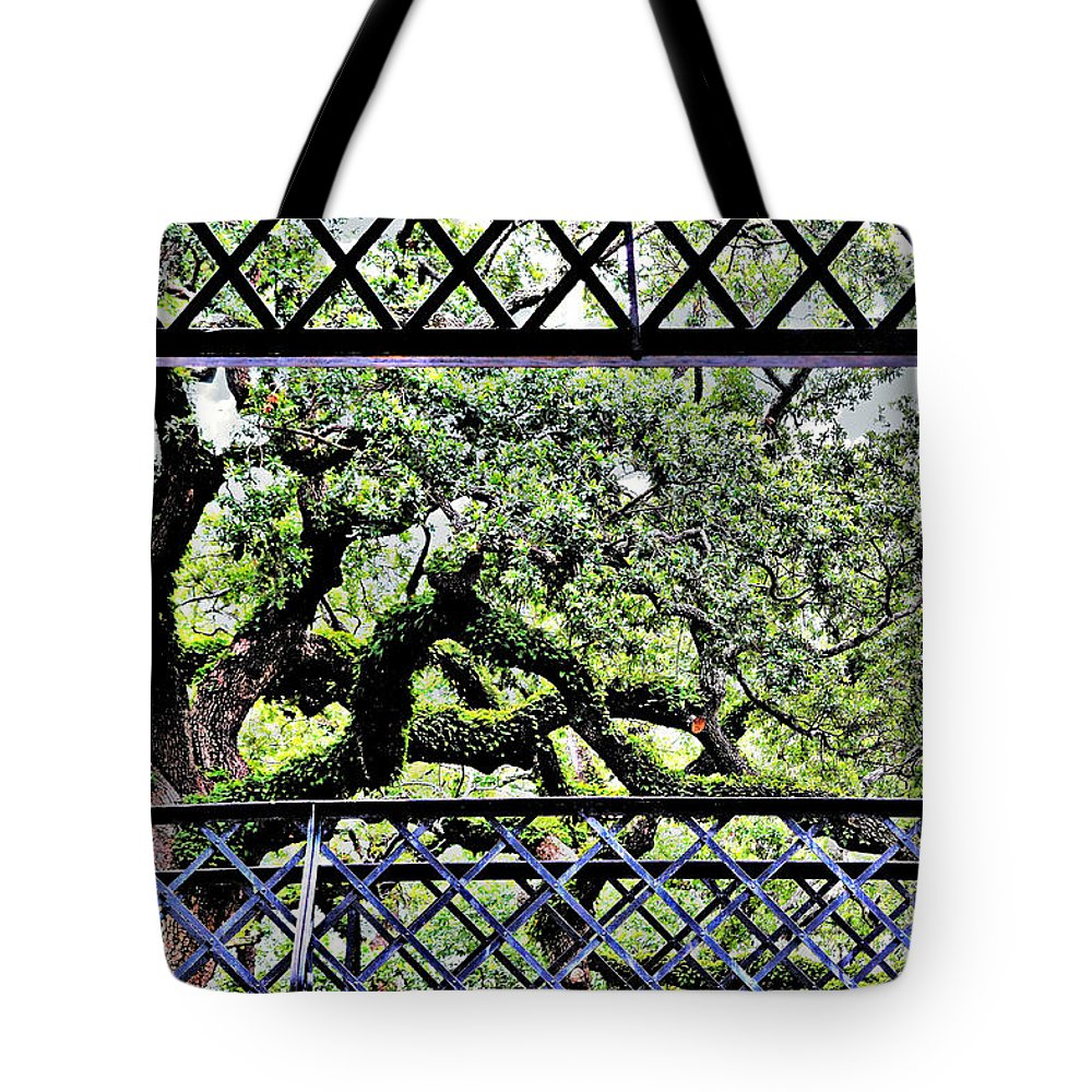 Trees Tote Bag featuring the photograph Bridge Through Live Oaks by Diann Fisher