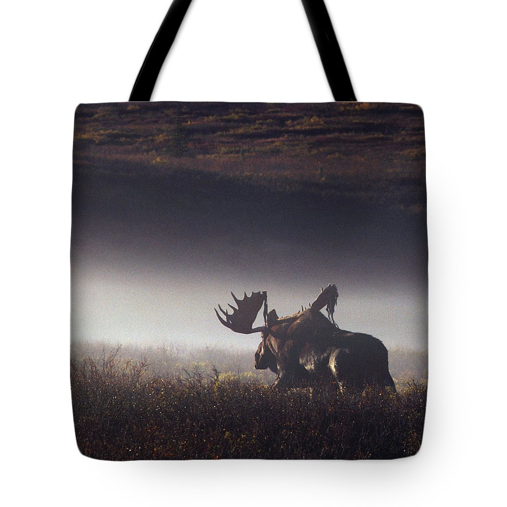 Majestic Tote Bag featuring the photograph Bull Moose Alces Alces Walking Through by Johnny Johnson