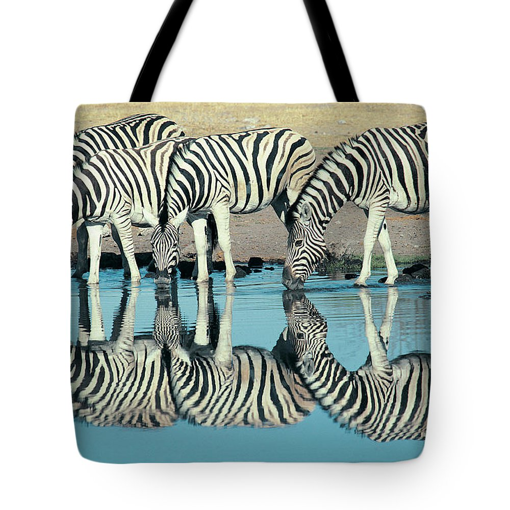 Plains Zebra Tote Bag featuring the photograph Burchells Zebra Equus Burchelli by Digital Vision.