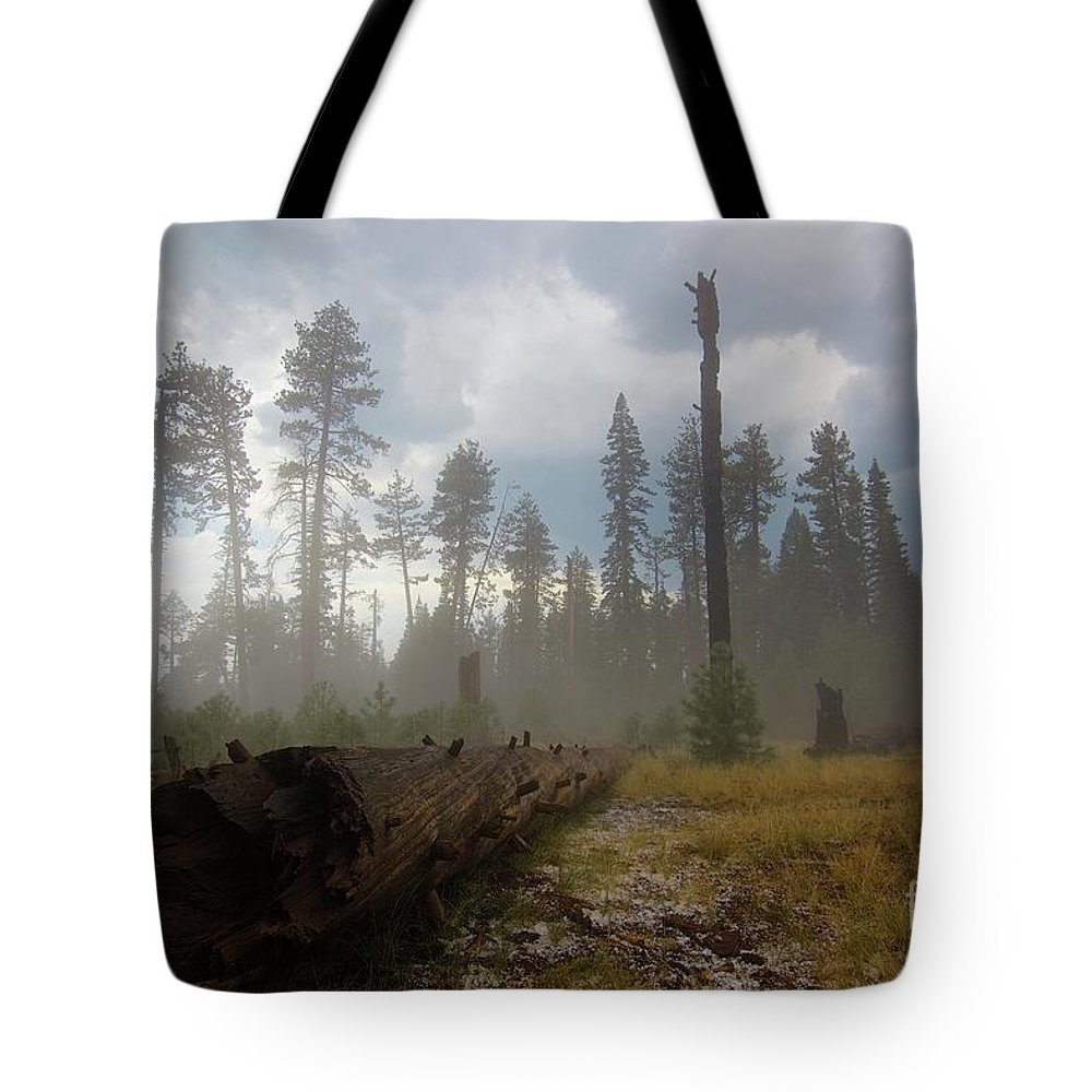 Burnt Tote Bag featuring the photograph Burned Trees At Lassen Volcanic by Victor De Souza