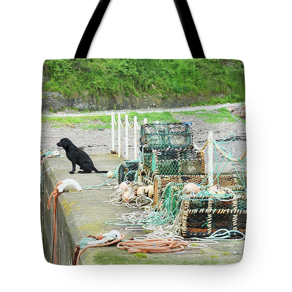 Burnmouth Tote Bag featuring the photograph Burnmouth Harbour With Dog On Pier And Lobster Pots by Victor Lord Denovan
