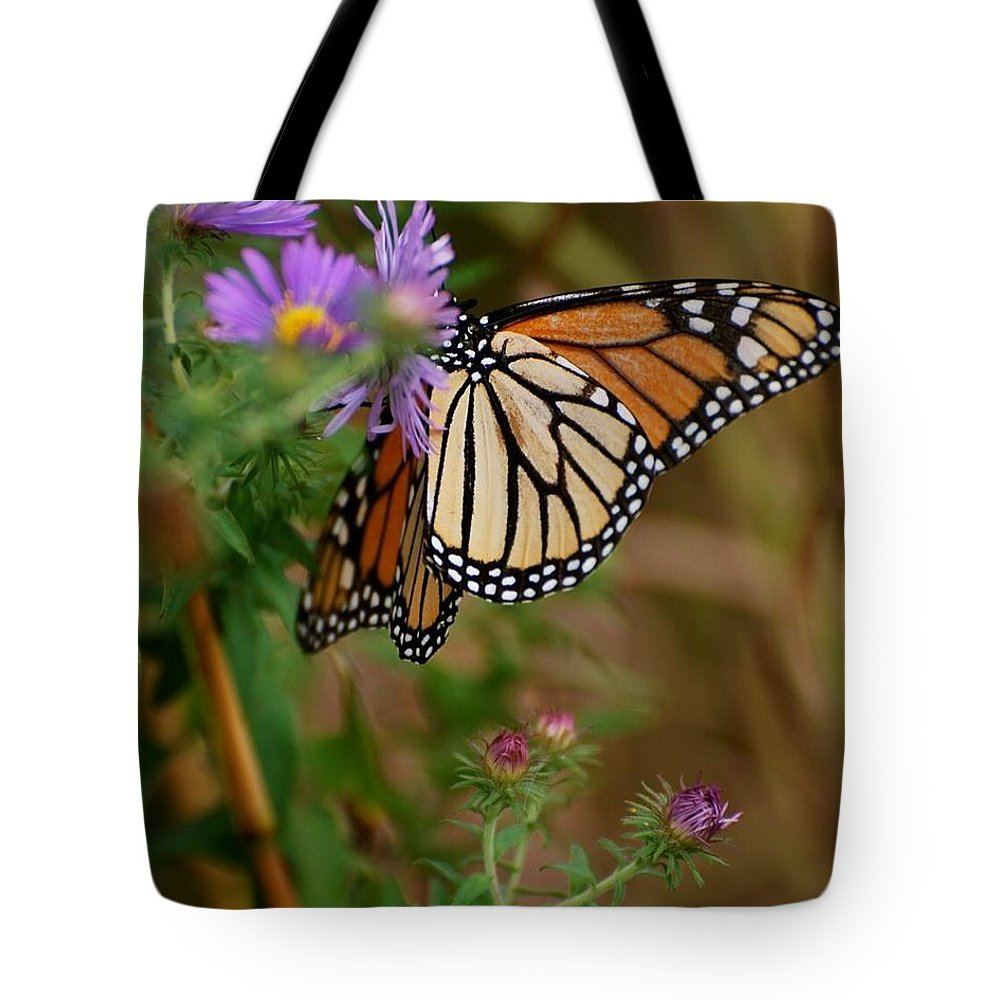 Butterfly Tote Bag featuring the photograph Butterfly by Deb Cawley
