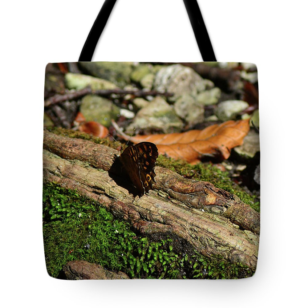Butterfly Tote Bag featuring the photograph Butterfly by Marco Trotta