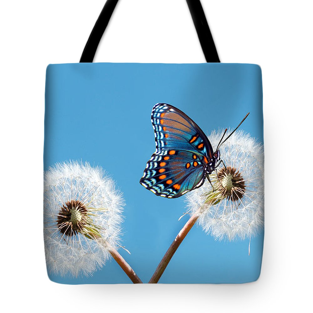 Animal Themes Tote Bag featuring the photograph Butterfly On Dandelion by Maria Wachala