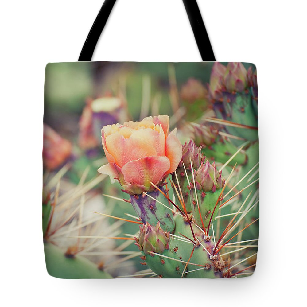 Orange Color Tote Bag featuring the photograph Cactus Blossom by Harpazo hope