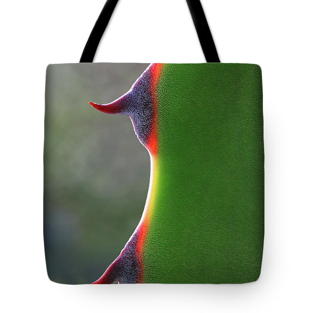 Needle Tote Bag featuring the photograph Cactus by Patricia Fenn Gallery
