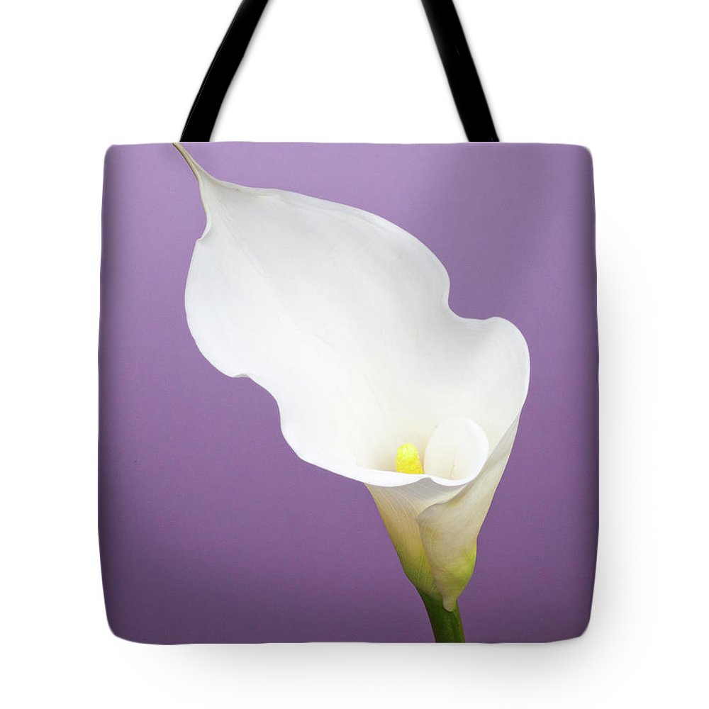 Calla Lily Tote Bag featuring the photograph Calla Lily On Purple Background by William Andrew