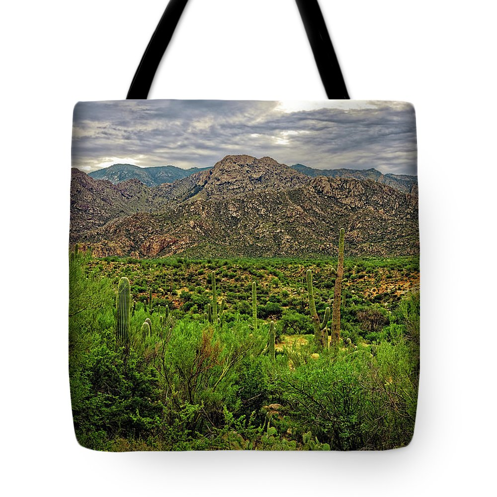 Santa Catalina Mountains Tote Bag featuring the photograph Catalina Foothills H1130 by Mark Myhaver