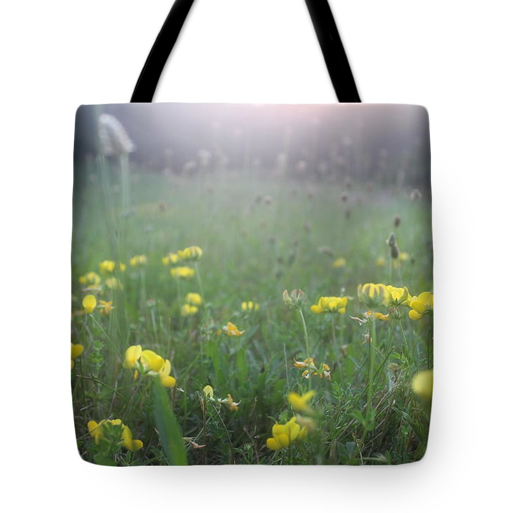 Wild Flowers Tote Bag featuring the photograph Catching Ray's by Brittany Galipeau
