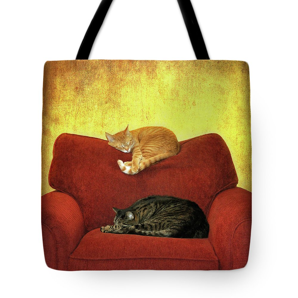 Pets Tote Bag featuring the photograph Cats Sleeping On Sofa by Nancy J. Koch, Pittsburgh, Pa
