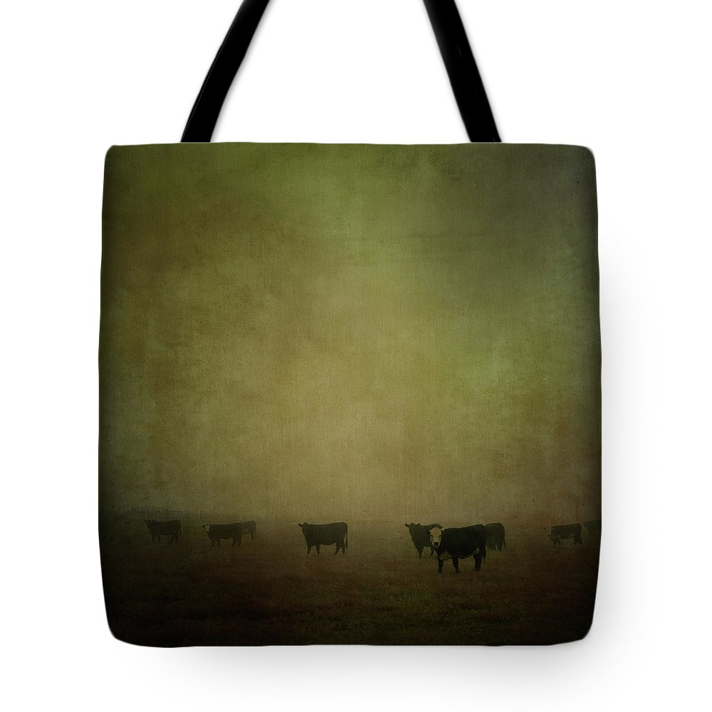 Pets Tote Bag featuring the photograph Cattle In The Mist by Jill Ferry