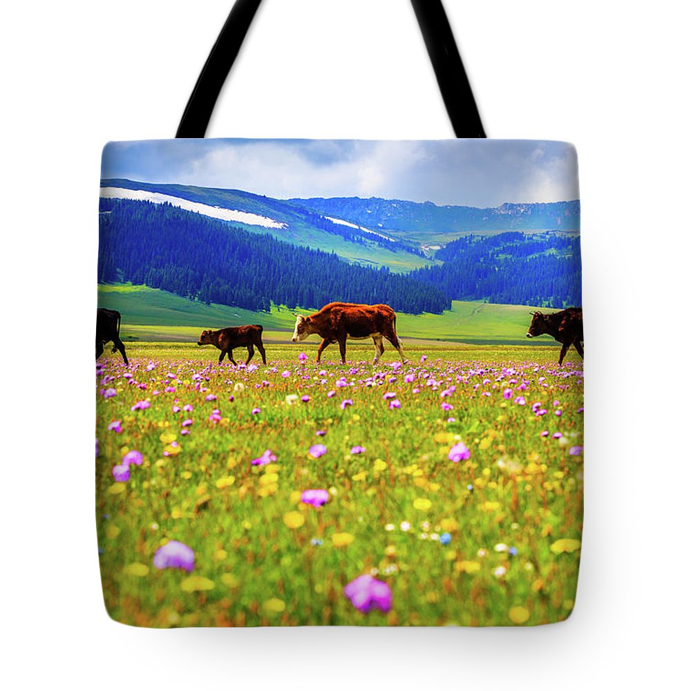 Tranquility Tote Bag featuring the photograph Cattle Walking In Grassland by Feng Wei Photography