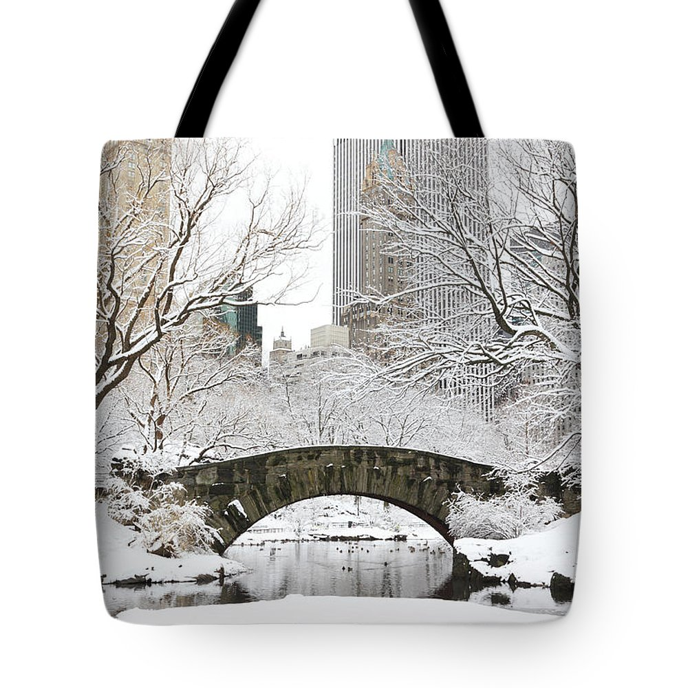 Snow Tote Bag featuring the photograph Central Park, New York by Veni