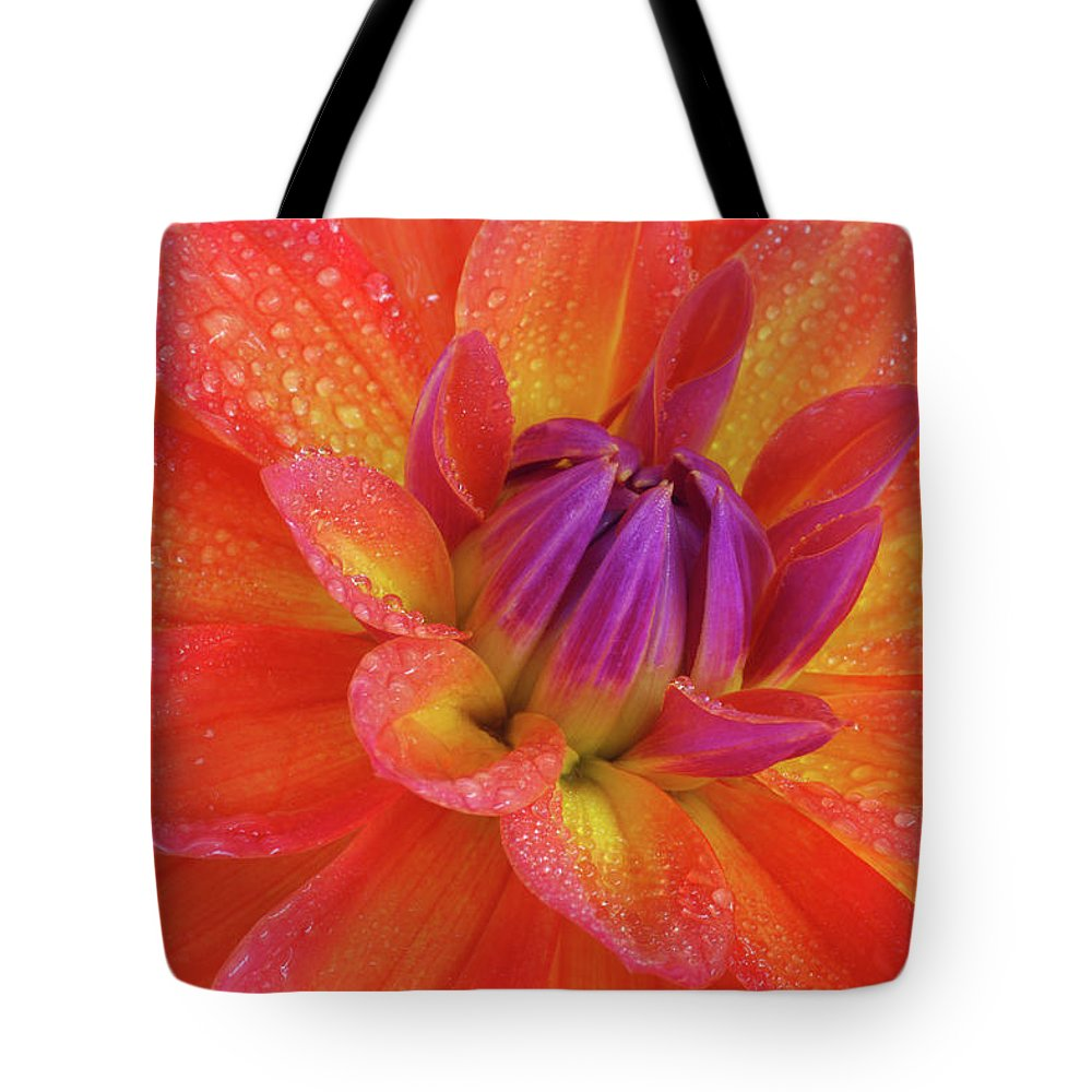 Orange Color Tote Bag featuring the photograph Centre Of Brightly Coloured Dahlia by Rosemary Calvert