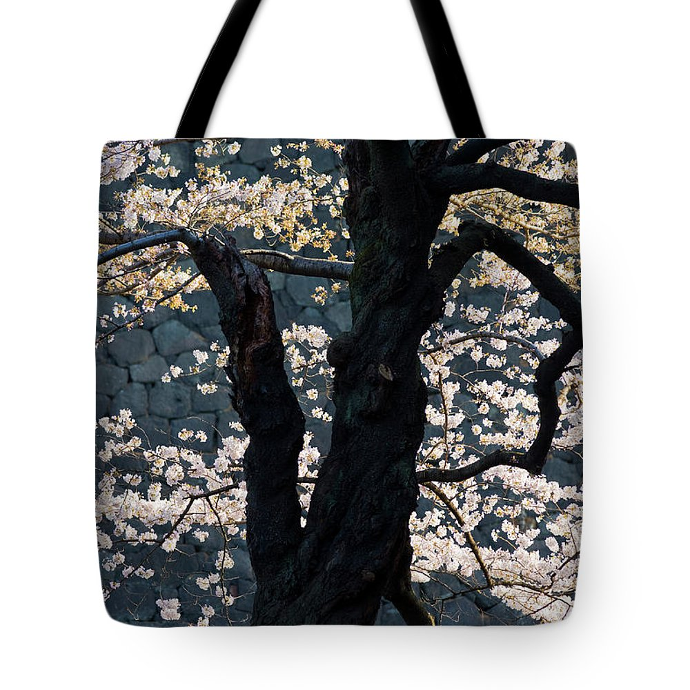 Tranquility Tote Bag featuring the photograph Cherry Blossoms At The Imperial Palace by B. Tanaka