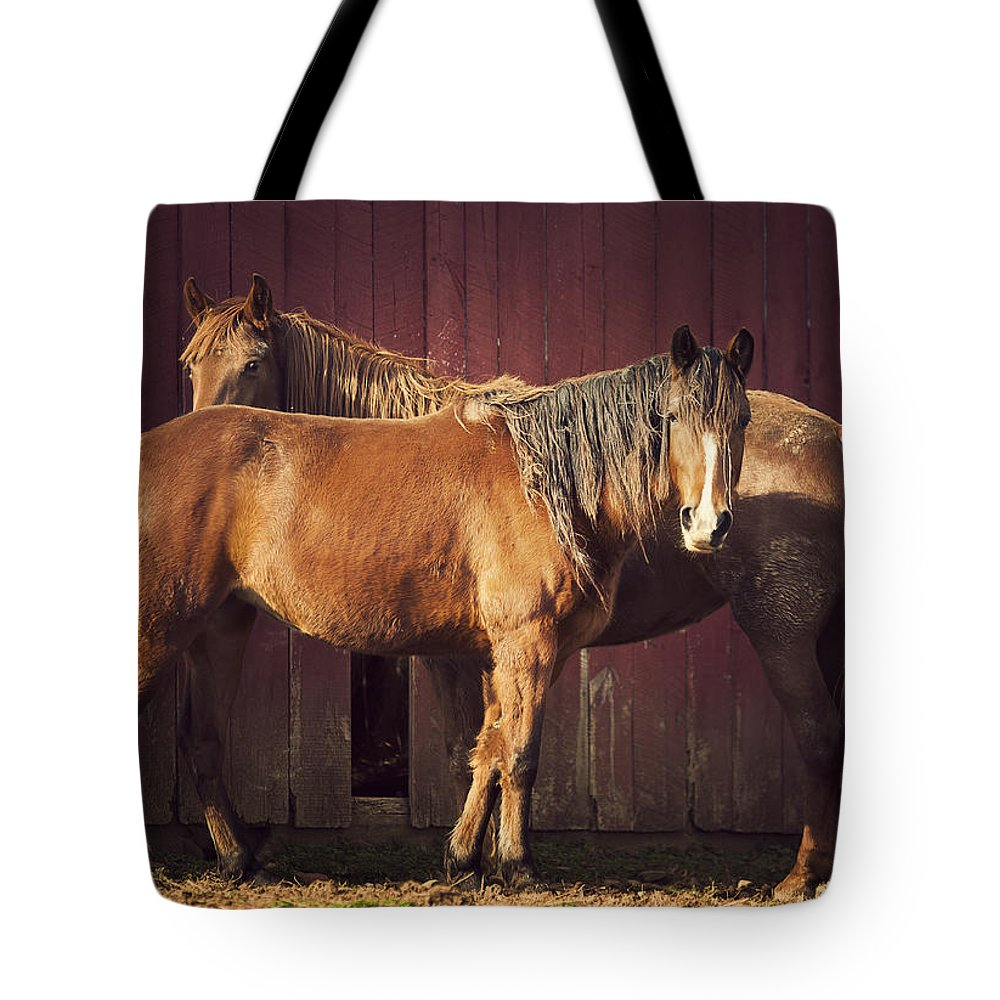 Horse Tote Bag featuring the photograph Chestnut Horses by Thepalmer