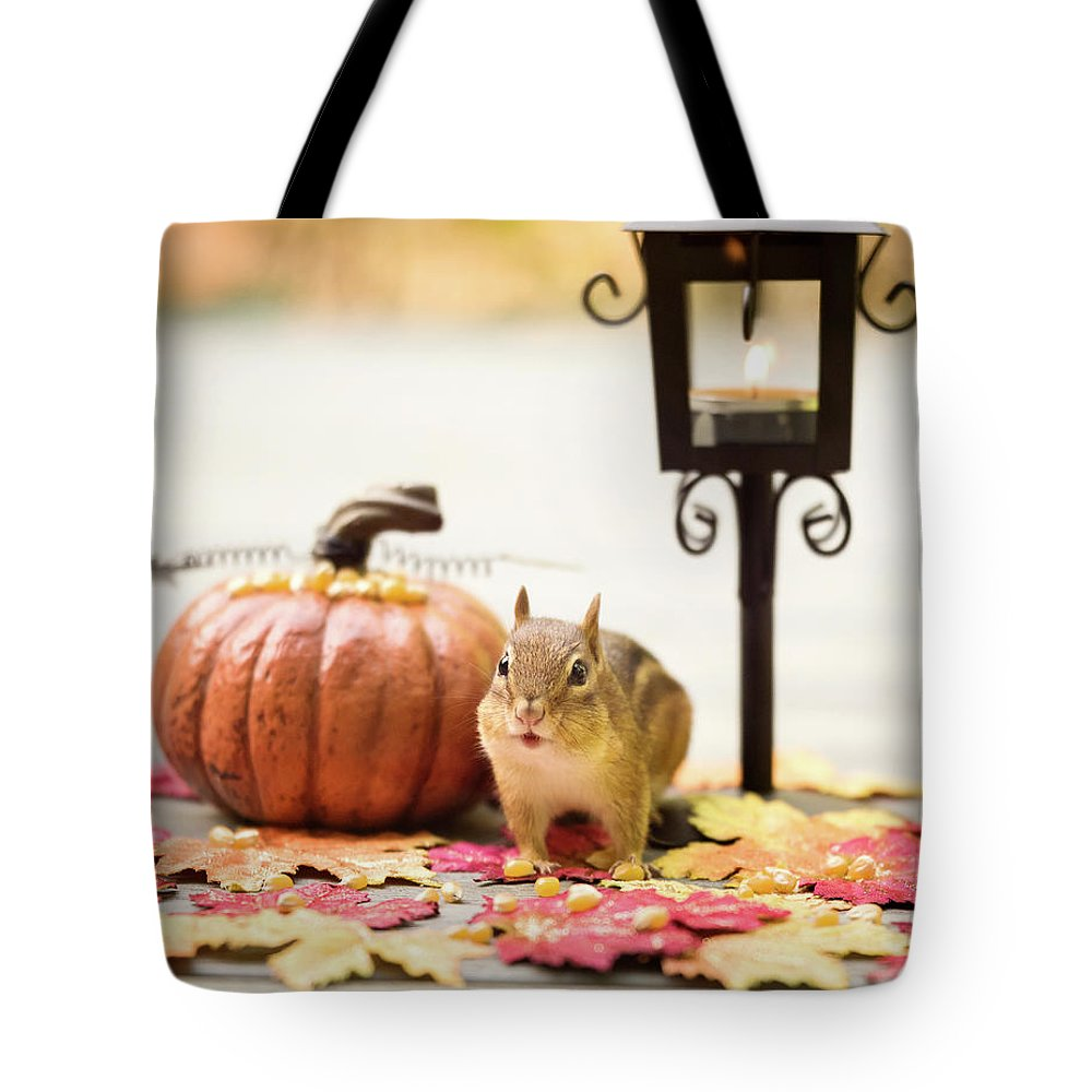 Chipmunk Tote Bag featuring the photograph Chipmunk In The Autumn by Melissa Stanton