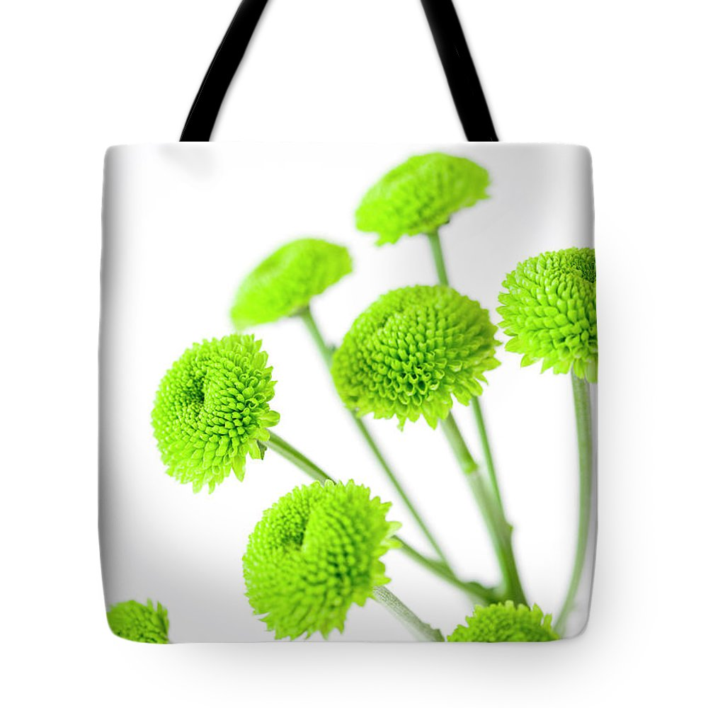 White Background Tote Bag featuring the photograph Chrysanthemum Flowers by Nicholas Rigg